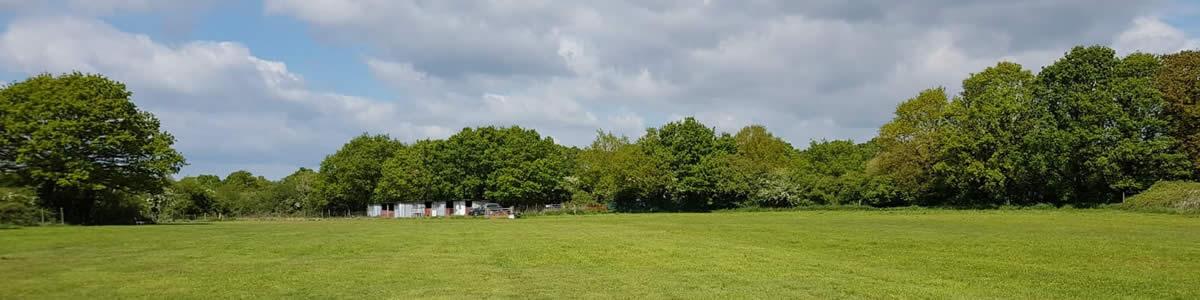 Upham Dog Field Rental